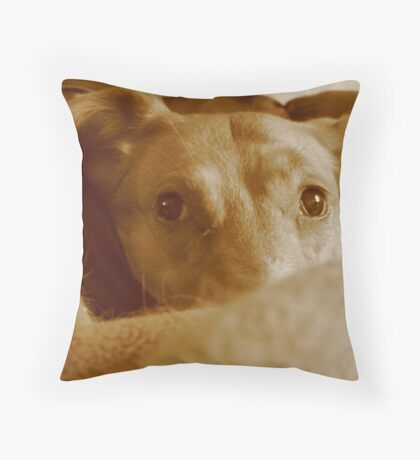 Scarey Throw Pillow
