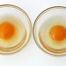 fresh eggs by Amy Greenberg