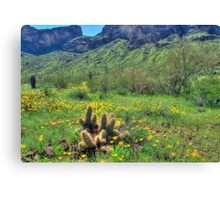Picacho Peak State Park Canvas Print