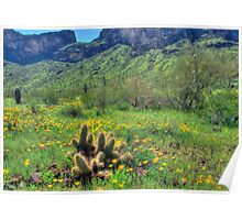 Picacho Peak State Park Poster