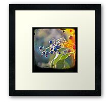 Drifting Away Framed Print