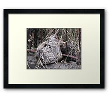 Do you see what I see? Leo the Lion(Best viewed large) Framed Print
