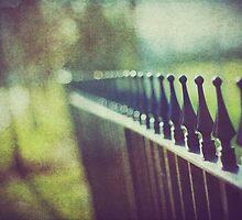 Fence by Sid Black