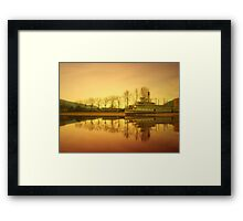March 20, 2010 Framed Print
