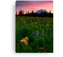 Alpine Garden Canvas Print