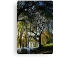 Autumn Willow Canvas Print
