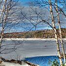 Scenic Views of Lake Sunapee in Winter by Monica M. Scanlan