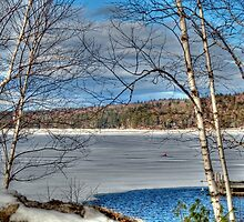 Scenic Views of Lake Sunapee in Winter by Monica M. Scanlan
