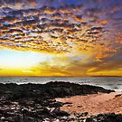 Rocky Point Panorama by Sheldon Pettit