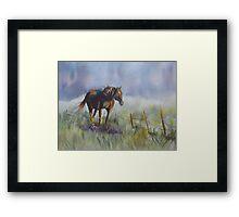Brookfield horse Framed Print