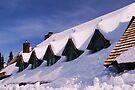 Paradise Lodge by Tori Snow