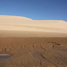 sand dunes at 1770 by footsiephoto