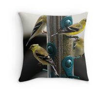 Gold Finches are back!!! Must be Springtime!! Throw Pillow