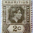 Stamp by Clare Lawrence