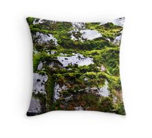 Moss and Stone Throw Pillow