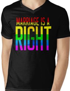 IT'S A RIGHT Mens V-Neck T-Shirt