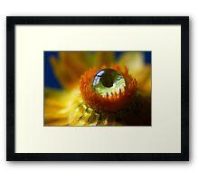 Cyclops Framed Print