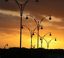 Sunset Silhouette by Stephen Horton