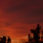 A Red Red Sky 2 by linsa