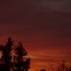 A Red Red Sky 4 by linsa