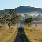Misty Morning Road - Outback Queensland Australia by AMP  Al Melville Photography