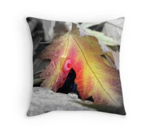 Fall color - Chico, CA Throw Pillow