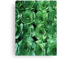 Garden Greenery Canvas Print