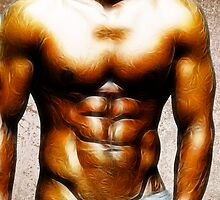 Six Pack by Shagreen
