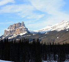 View of Castle Mountain by Alyce Taylor