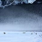 Hockey in the Mist by Alyce Taylor