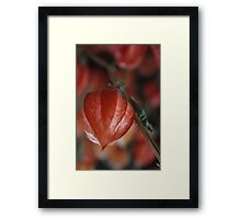 In red Framed Print