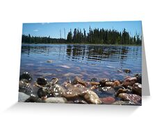 Northern Summer Greeting Card