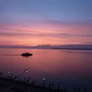 Lake Geneva Firey Skies by Richard Cassar
