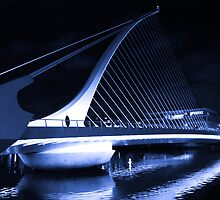 Samuel Beckett Bridge by Ferdinand Lucino