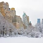 Central Park South - New York by Yannick Verkindere