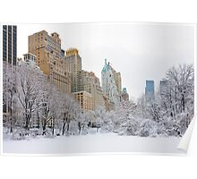 Central Park South - New York Poster