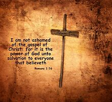 Not Ashamed by Deborah Berry
