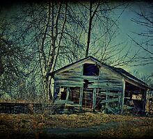 Dilapidated Shed by Aaron Campbell