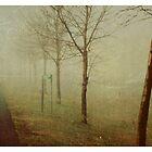 carte postale / 035 by linda vachon