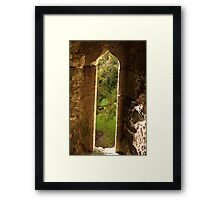 Spider web at Blarney Castle Framed Print