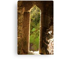 Spider web at Blarney Castle Canvas Print