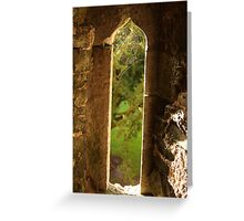 Spider web at Blarney Castle Greeting Card