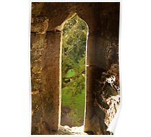 Spider web at Blarney Castle Poster