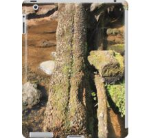The Fairy Glen Money Tree iPad Case/Skin