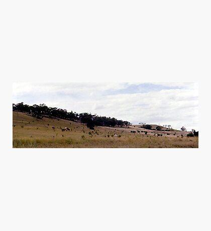 Cooma, NSW, Australia  Photographic Print