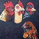 Meet the Chickens by Amy Greenberg