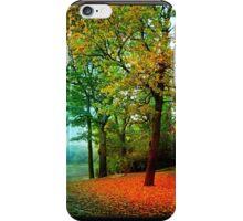 Red carpet iPhone Case/Skin