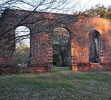 Biggin Church Ruins by James J. Ravenel, III
