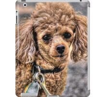 Smart eyes iPad Case/Skin