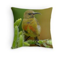 'Petite' Throw Pillow